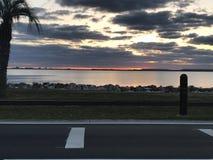 Tampa-Sonnenaufgang Lizenzfreie Stockbilder