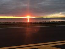 Tampa-Sonnenaufgang Stockfoto