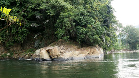 Tamparuli flod Royaltyfria Bilder