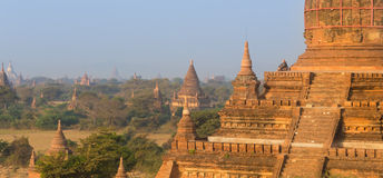 Tamples von Bagan, Birma, Myanmar, Asien Stockbild