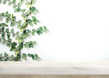 Tampo da mesa de madeira na parede branca com fundo da folha imagem de stock