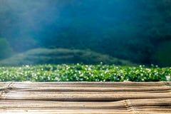 Tampo da mesa de madeira na plantação de chá Fotografia de Stock