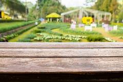 Tampo da mesa de madeira no jardim da plantação Fotos de Stock Royalty Free