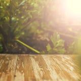 Tampo da mesa de madeira rústico vazio no fundo borrado do aipo no Fotografia de Stock Royalty Free