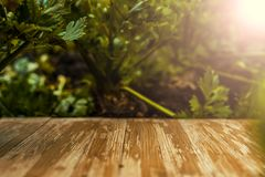 Tampo da mesa de madeira rústico vazio no fundo borrado do aipo no Foto de Stock