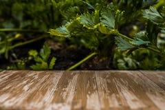 Tampo da mesa de madeira rústico vazio no fundo borrado do aipo no Imagem de Stock
