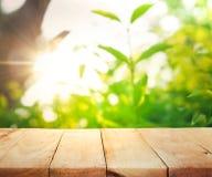 Tampo da mesa e borrão de madeira do bokeh verde fresco do jardim imagens de stock royalty free