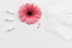 Tampong hygienblock, födelsekontrollpreventivpiller, lekmanna- lägenhet royaltyfria foton