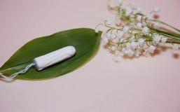 Tampons blancs propres de coton sur le fond rose sur une feuille verte menstruation Hygi?ne f?minine en quelques p?riodes, traite photos libres de droits