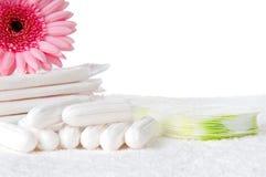 Tampons e almofadas Imagem de Stock Royalty Free