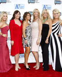 Tamra Barney, Jeanna Keough, Lynne Curtin, Vicki Gunvalson, Lauri Waring und Gretchen Rossi stockbild
