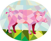 Tamworth Pig Side Oval Low Polygon Royalty Free Stock Photos