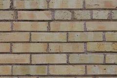 Tan Brick Wall met donkere mortor Royalty-vrije Stock Foto's