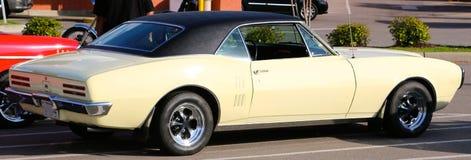 Tan Classic Pontiac Firebird Royalty Free Stock Image
