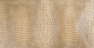Tan Colored Embossed Gator Back-Leertextuur royalty-vrije stock foto's