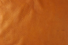 Tan leather. Tanned leather with some blemishes stock images