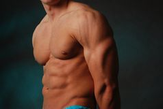Tan man flexing. Male torso nice abs and great tan he's flexing his tri's royalty free stock photos
