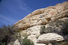 Tan Outcropping Stock Images