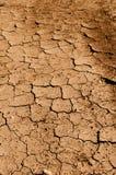 Tan rachou a terra, a sujeira ou a lama imagem de stock