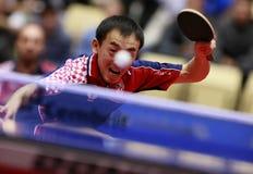 Tan Ruiwu (CRO). Playing at the 2012 European Table Tennis Championships,17-21 October 2012,Herning,DEN Stock Photography