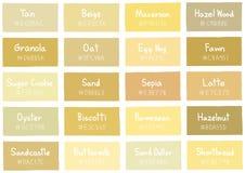 Tan Tone Color Shade Background med kod och namn Royaltyfri Fotografi