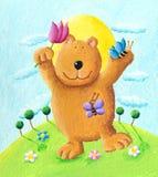 tana niedźwiadkowy śliczny park Obrazy Royalty Free