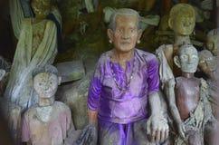 Tana Toraja, Sulawesi, Indonesië royalty-vrije stock afbeelding