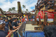 Tana Toraja, Sulawesi, Indonesia Royalty Free Stock Photos