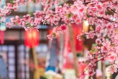 Tanabata节日 库存照片
