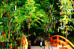 Tanabata,日本事件在夏天,京都日本 免版税库存图片