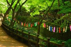 Tanabata festival in Japan. Stock Photo