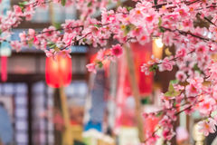Tanabata Festival. Sakura and red bamboo lantern decoration in Tanabata Festival Stock Photo