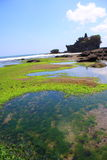 The Tanah Lot Temple, Bali, Indonesia Royalty Free Stock Photo