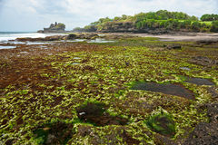 The Tanah Lot Temple, Bali, Indonesia. Royalty Free Stock Photography