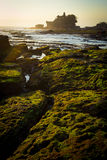 Tanah Lot Temple on Sea Royalty Free Stock Image