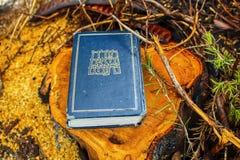 Tanakh, bibbia ebraica Torah, Neviim, Ketuvim Libro ebreo, raccolta canonica dei testi ebrei l'israele fotografia stock libera da diritti