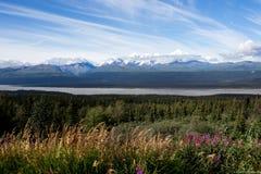 Tanana river and Chugach range. Tanana river and Chugach mountain range, Alaska, USA royalty free stock image