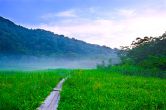 Tanashiro Marshland, Japan. Stock Image