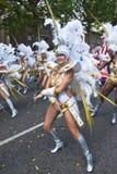 Tancerz od Paraiso szkoły samba pławik Obrazy Royalty Free