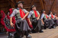 Tancerze od Argentyna w tradycyjnym kostiumu Zdjęcie Stock