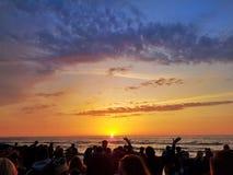 Tanczy do słońce wzrost zdjęcie royalty free