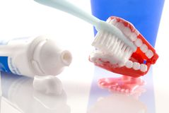 Tand-borstelt Stock Afbeeldingen