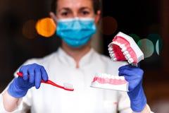 Tand en endodontic instrumenten in handen van de tandartsvrouwen die van tandartsThe in blauwe handschoenen metaal professionele  Royalty-vrije Stock Foto