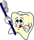 Tand en tandenborstel Stock Fotografie
