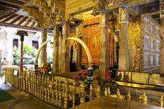 tand för tempel för kandy lankasri Arkivfoton