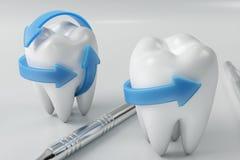 tand för tolkning 3d med tandläkarehackan Tand-, medicin- och hälsobegrepp Muntlig tand- hygien, muntlig omsorg Royaltyfri Foto