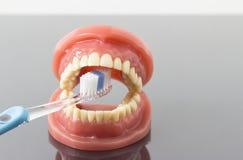 Tand- hygien- och renlighetbegrepp Arkivbilder