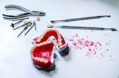 Tand- laboratorium Den fulla tandprotesen med toolfor gör tandprotesen i tekniskt Fotografering för Bildbyråer