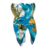 Tand met de blauwe textuur van de Aardekaart Globaal 3D tandheelkundeconcept, vector illustratie