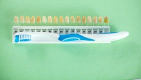 Tand- modell och tand- utrustning på blå bakgrund, begreppsbild av tand- bakgrund tand- hygien för bakgrund Fotografering för Bildbyråer